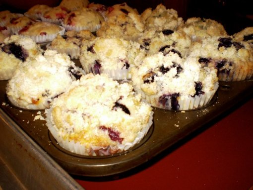 Must Seed Blueberry Muffins